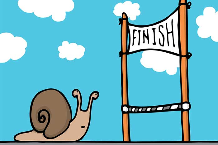 Snail crossing the finish line photo