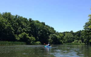 Paddling in 18 Mile Creek