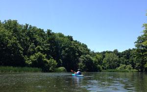 Paddling in 18 Mile Creek