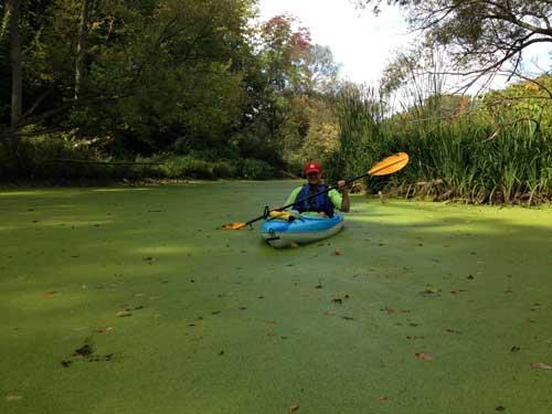 12-mile-creek-sludge2